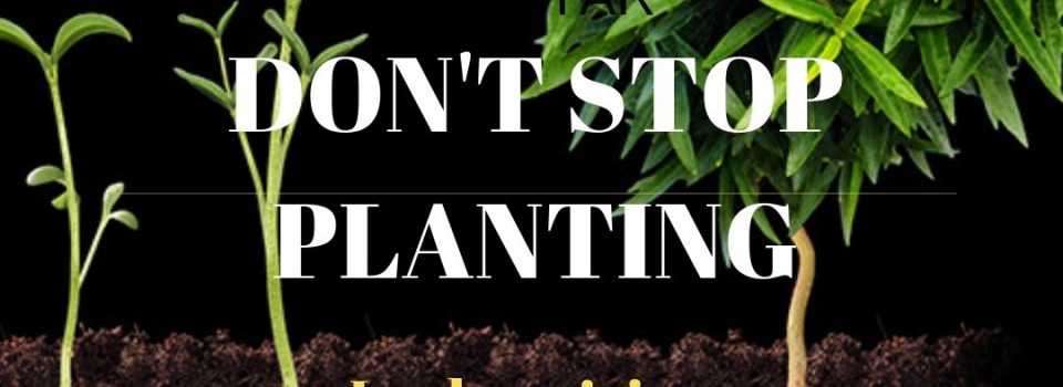 Don't stop planting